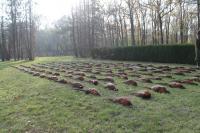 Фазан - фазанарий (Чешская Республика)